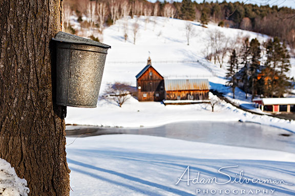 Maple bucket near a snowy farm