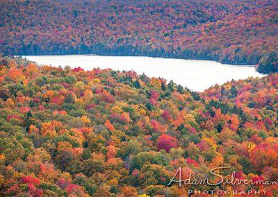 Vermont fall foliage near a lake.