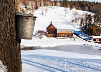 Vermont maple farm in winter